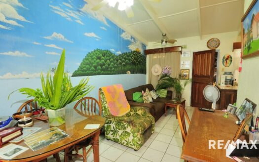 Tropical Condo Close to the Beach and Town